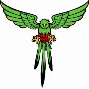 quetzalcolor